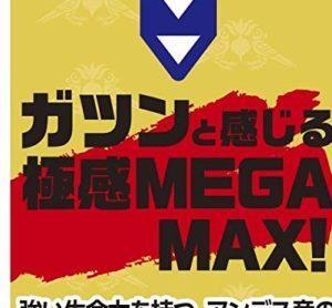 メガマックスマカ6600